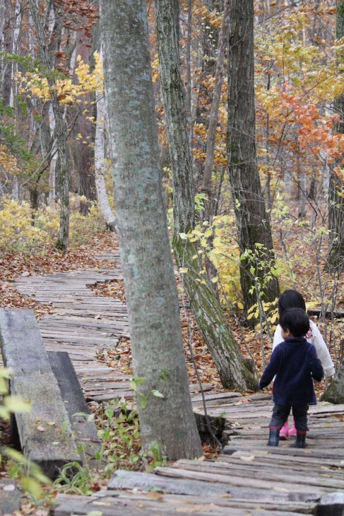 秋の八ヶ岳倶楽部2