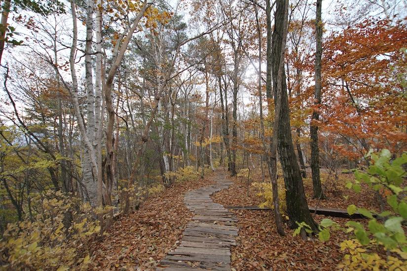 秋の八ヶ岳倶楽部1