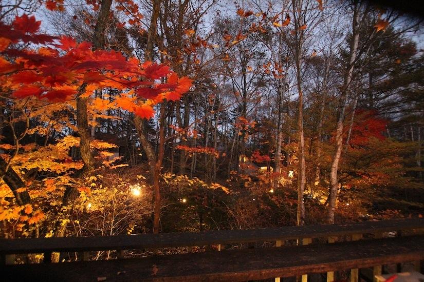 秋の八ヶ岳倶楽部4