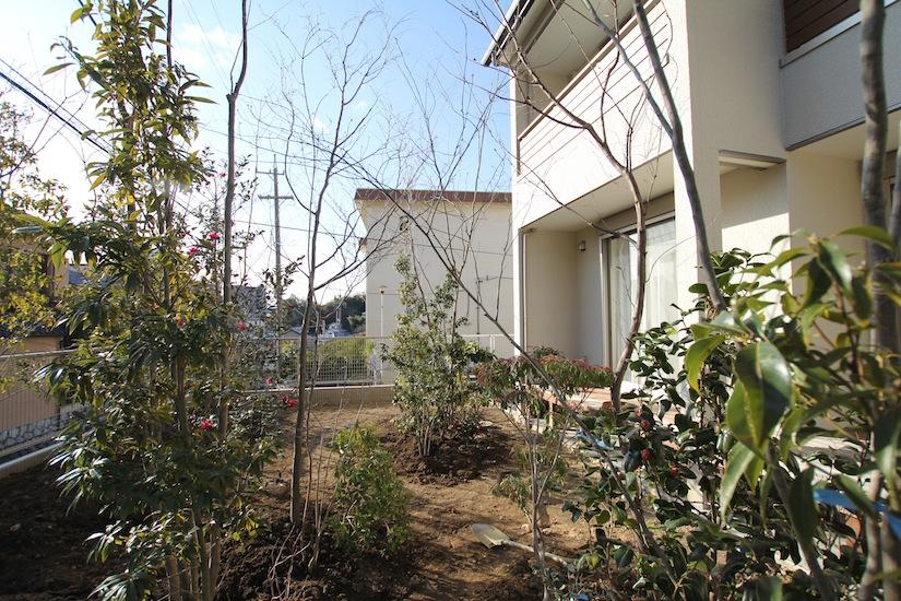 雑木の庭1
